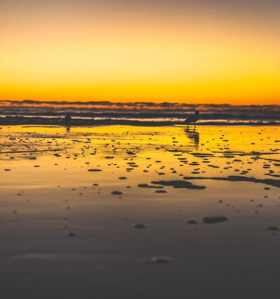 Sunrise Saturday's . . . . . . #artofvisuals #visualsofearth #untoldvisuals #heatercentral #potraitcentral #aov5k #earthguide #fatalframes #unlimitedplanet #ig_color #ig_masterpiece #panasonic #creativeunleashed #silhouettes #exploreourearth #vol1k #acreativevisual #ig_rhody #reflectiongram #igersnewengland #sky_brilliance #hubs_united #theoceanstate #lumix #visualambassadors #signa #honestframes #leica #goldframes #waves